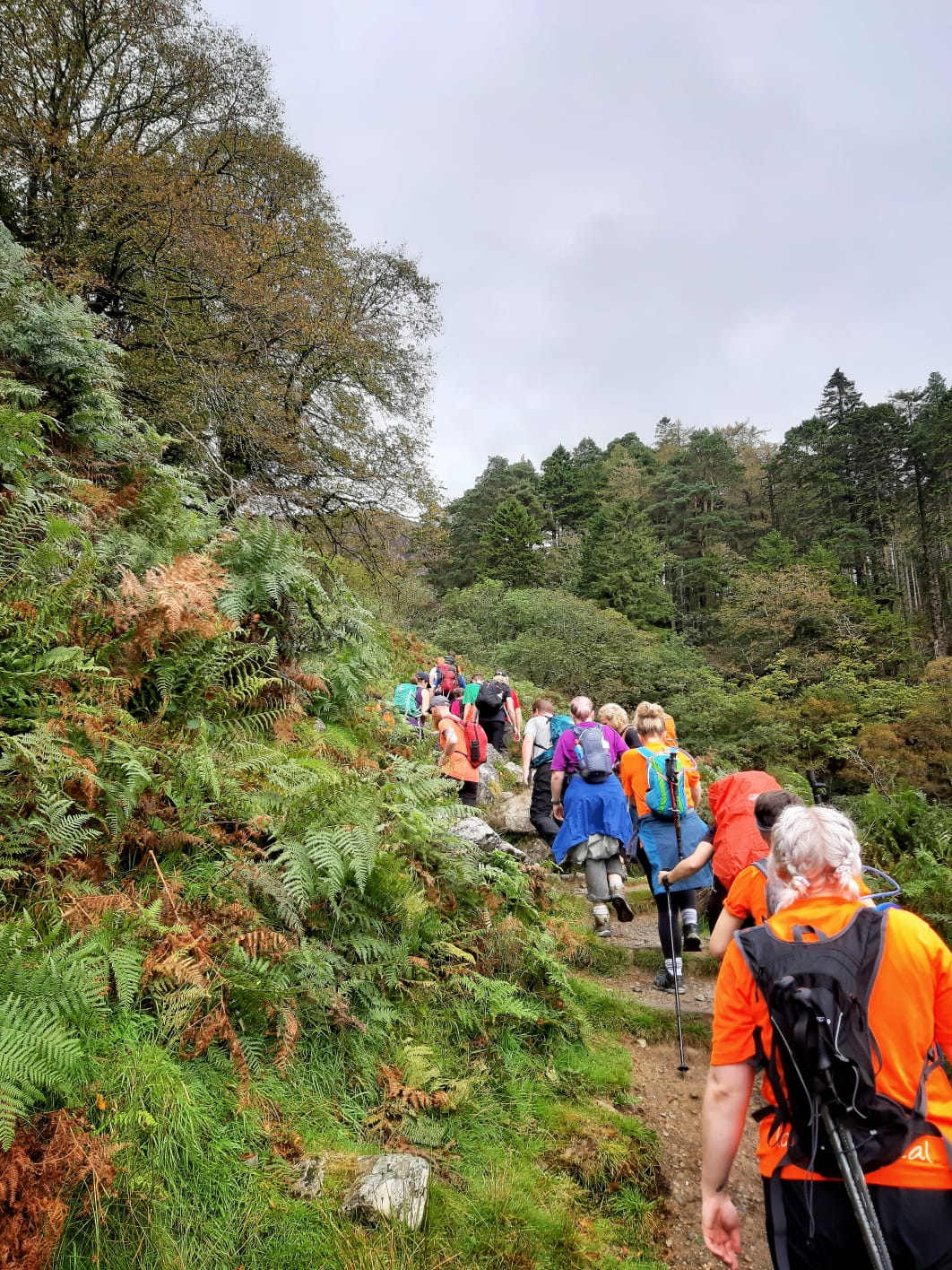 Charity group on an adventure challenge